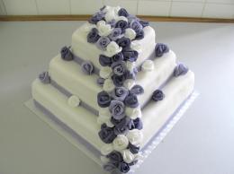 dort lila čtverec patrový