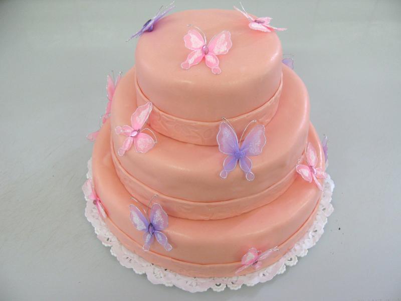 dort s motýlky